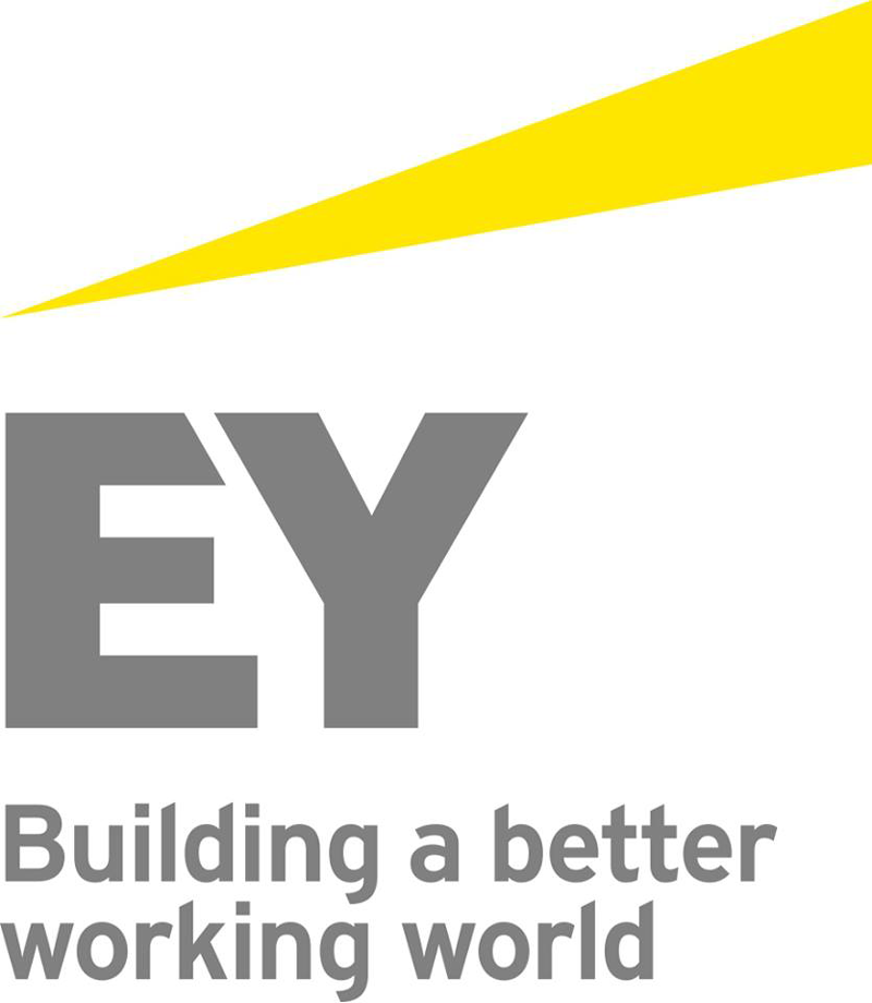 ey logo detail